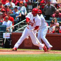 St. Louis Cardinals Oscar Taveras - Photo Credit - Alex Lewis